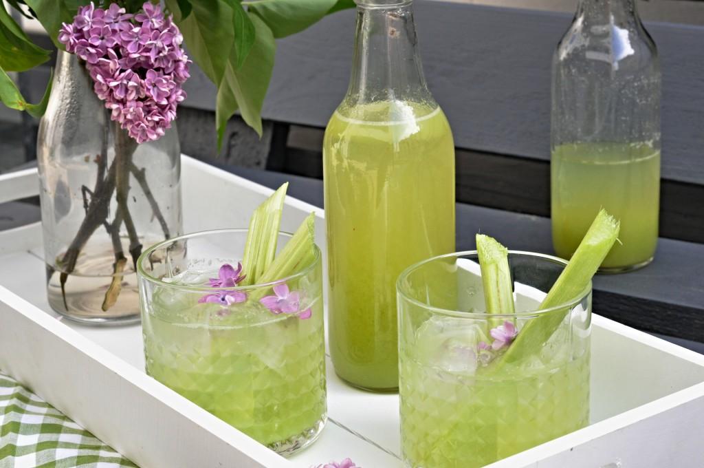 Rebarborová limonáda